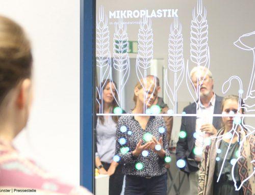 Smart Mirror gewinnt