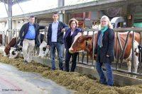 Projekt der FH Bielfeld entwickelt eine umweltfreundliche Beleuchtung für den Kuhstall (Bild: Berit Steinkröger).