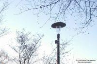 Das städtische Projekt der FH Münster optimiert die Beleuchtung von Straßenlaternen durch Sensoren (Bild: FH Münster | Fachbereich Bauingenieurwesen)