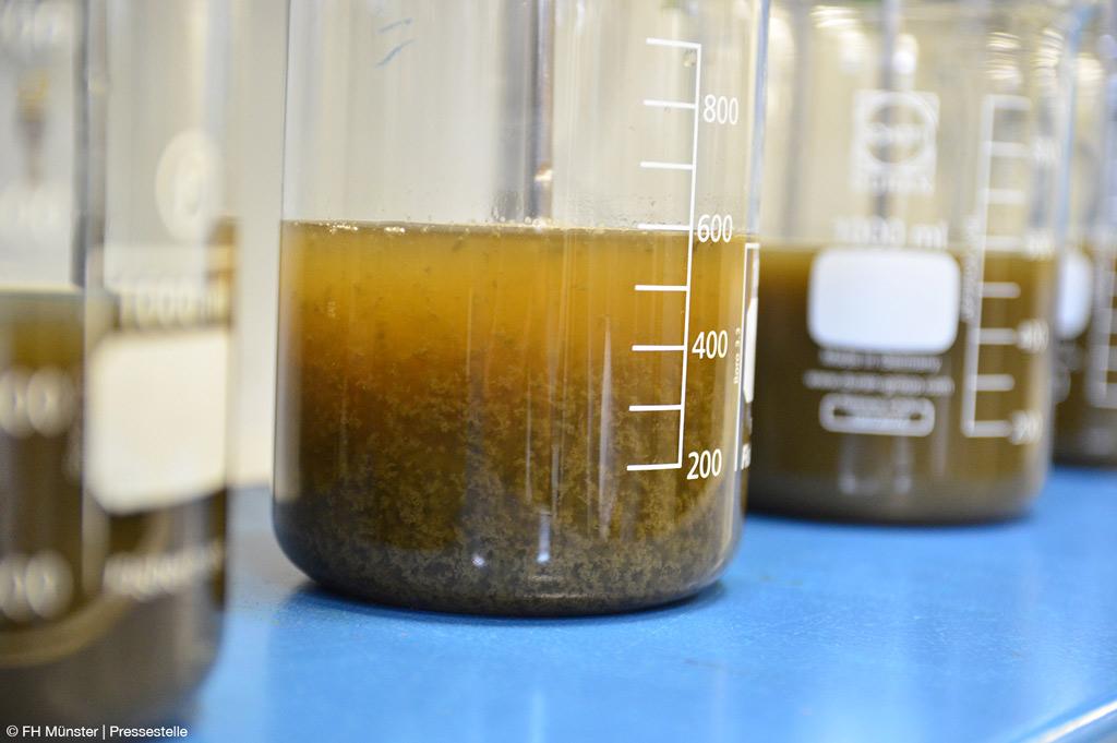Flockung erfolgreich: So lässt sich der Phosphor feinseparieren (Bild: FH Münster | Pressestelle).