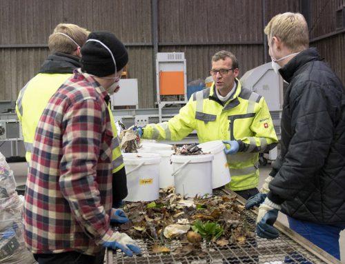 Bioabfall richtig trennen