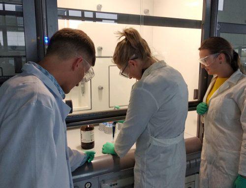 Nanofasern für Knochen
