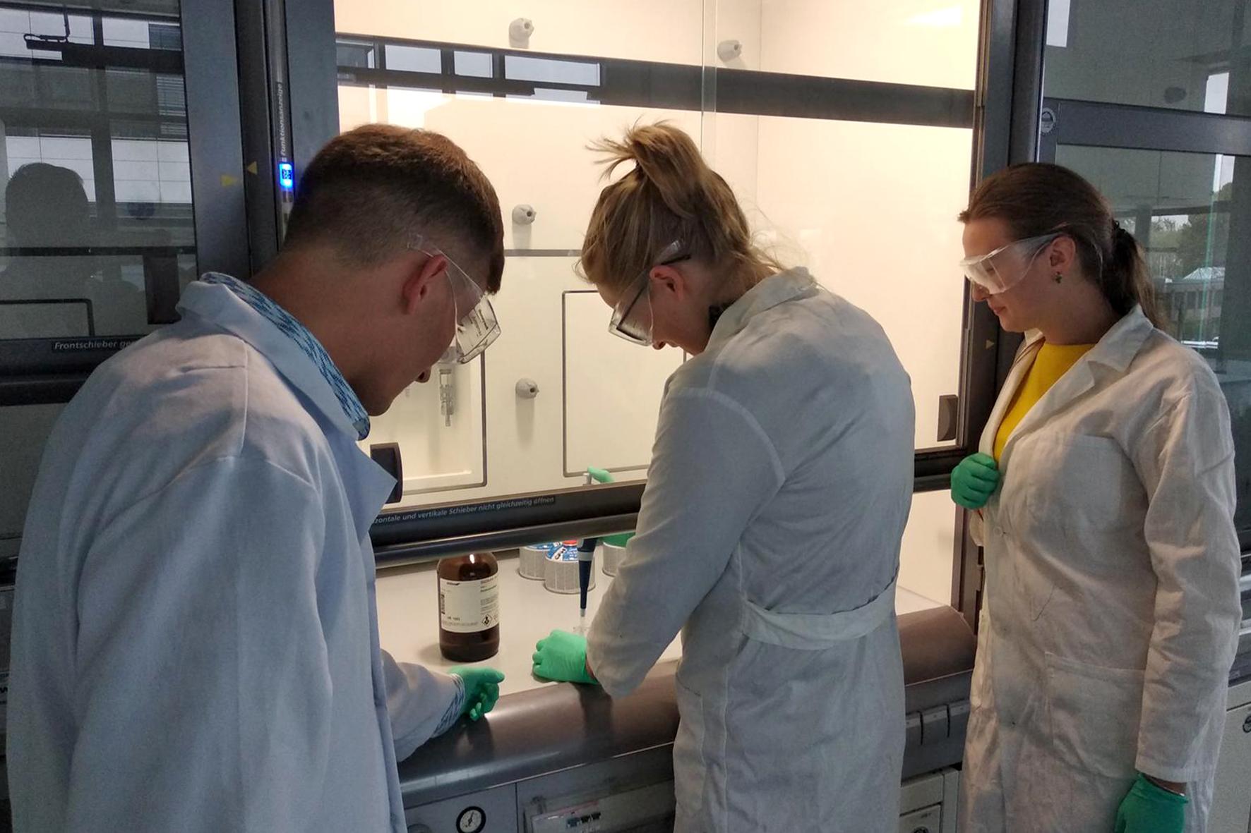 Die Mitarbeiter*innen des Projekts arbeiten in Kooperation an der Herstellung von hybriden Nanofasern zur Stärkung der Knochendichte.